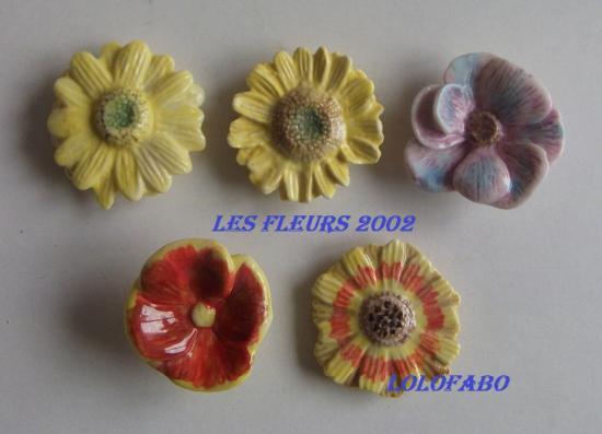 2002-dv709-x-les-fleurs-02p65.jpg